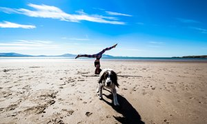 Yoga and wild swimming, Anglesey