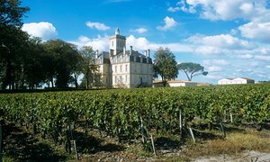 Chateau Larose and its vineyards