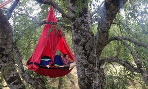Undiscovered Mountains overnight tree top adventure in the southern French alps