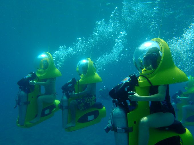 Share the best caribbean underwater adventures with you for Blue sea motor inn