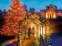 Illuminating Christmas … the gardens at Blenheim Palace, Oxfordshire
