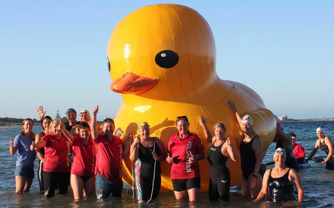 Coogee Swim Duck Mascot Missing